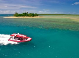 Low Isles speedboat reef trip