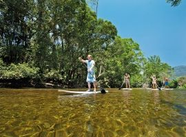 Mossman River paddleboard tour