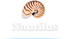 Nautilus Accommodation Port Douglas