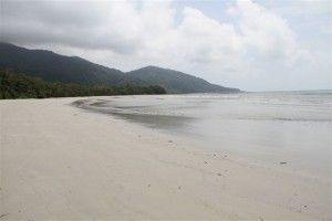 Cape Tribulation March