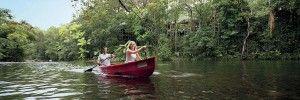 Mossman River kayaking tours