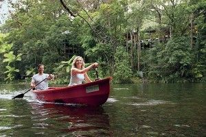 One of the many Port Douglas activities: kayaking down the Mossman River
