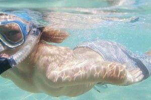 Great Barrier Reef snorkelling adventures